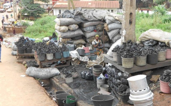Somalia joins push for cross-border efforts against illegal charcoal trade