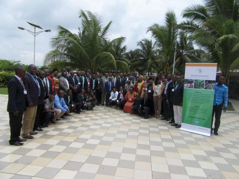 Forest experts seek to deepen knowledge on African forestry