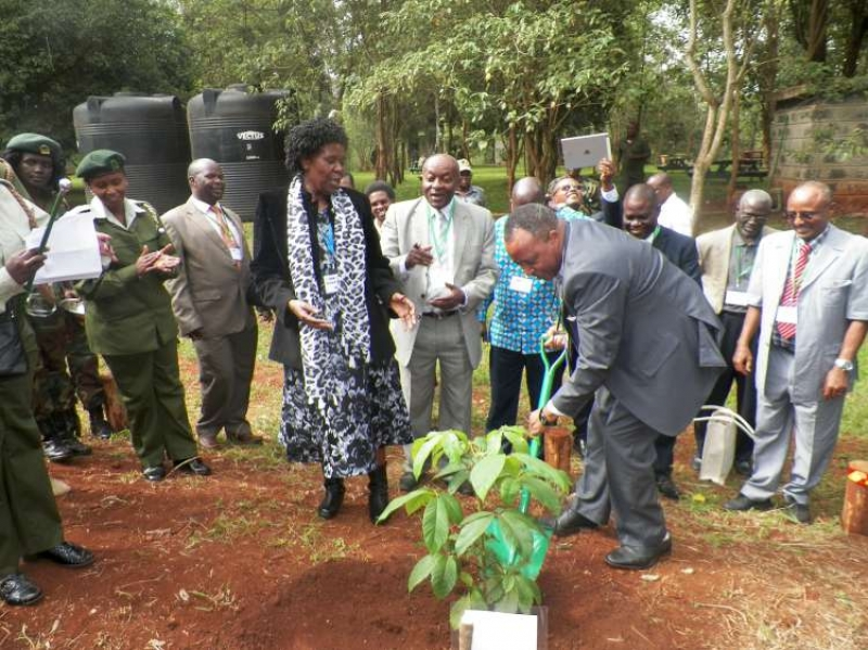 AFF marks anniversary with tree planting craftsmanship  in Karura Forest.