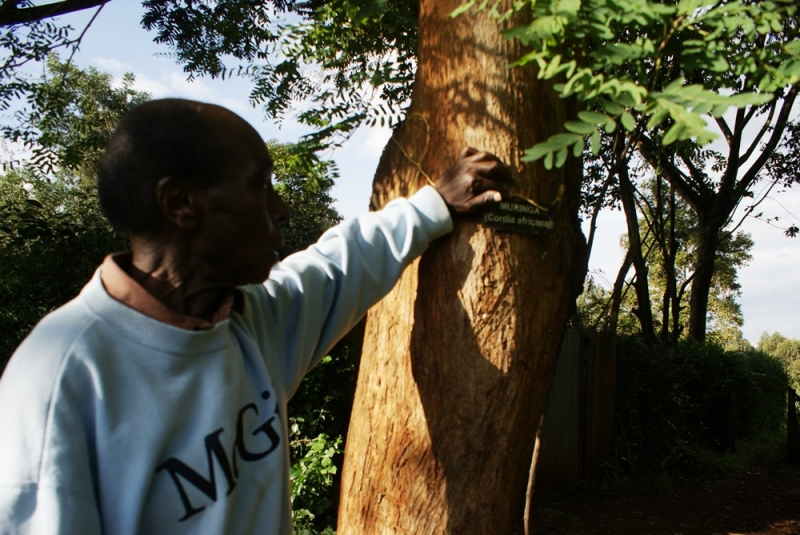 Farmers unite to save Kenya's deepest bog
